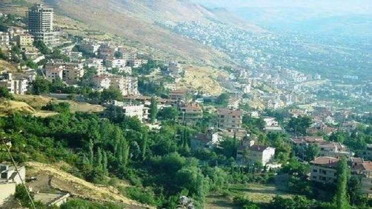 الحرب أهلكت 27 مليون شجرة في سوريا