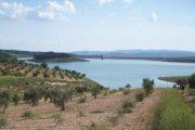 لمحة عن منطقة عفرين التي تتأهب تركيا لاجتياحها
